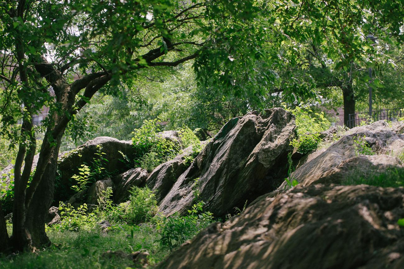 A park in Manhattan. Canon 6D, Canon 100mm f/2.8