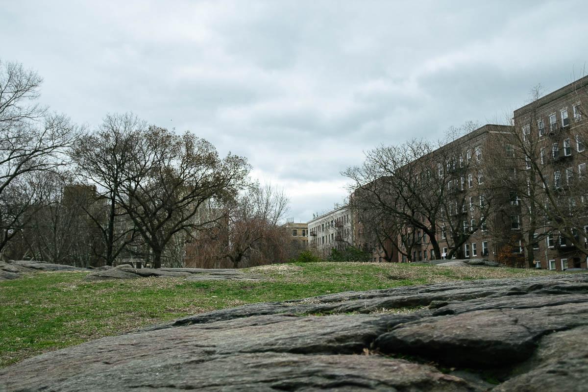A grassy hill in Washington Heights, Manhattan. Fuji X100F, f/2.8