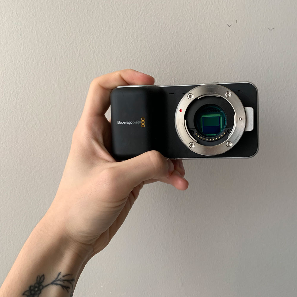 Black Magic Pocket Cinema Camera Bmpcc Review You Need This 500 Camera In 2020 Shark Palm
