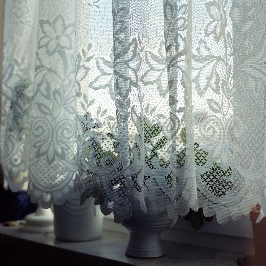 54-plants-on-windowsill-traudel.jpg