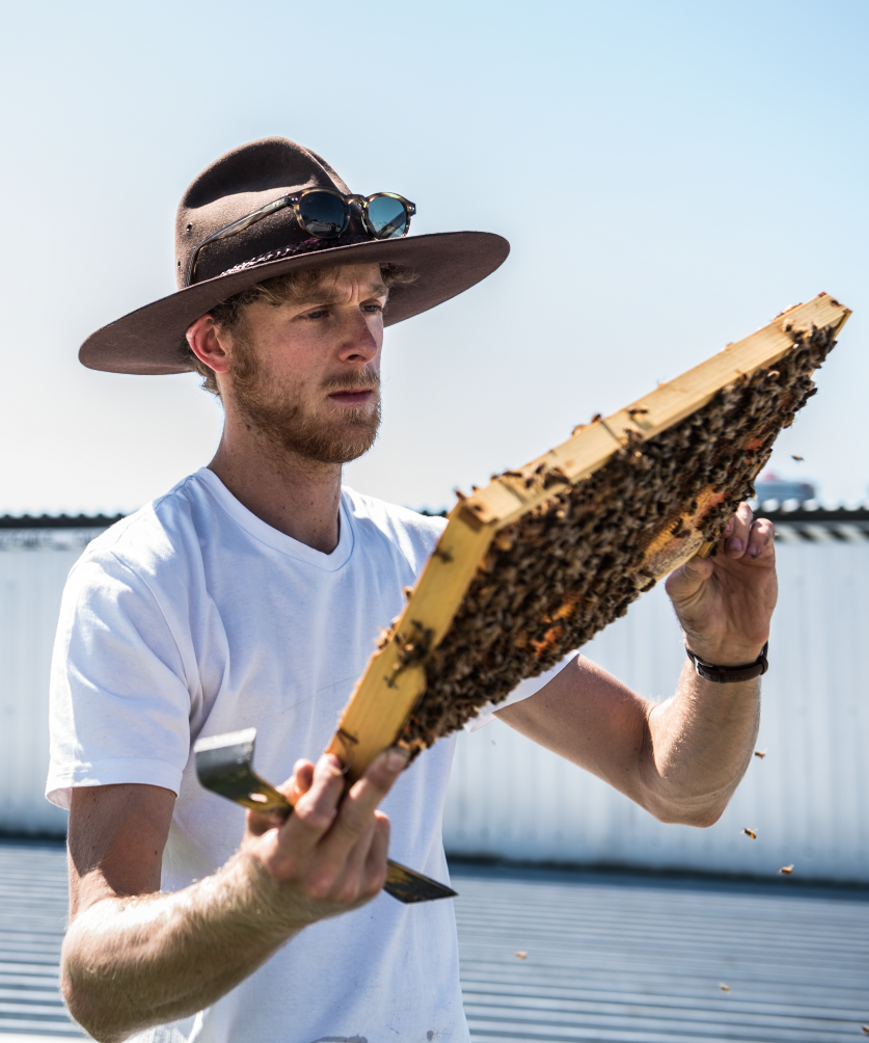 Jack Stone, the director/apiarist of Bee One Third.