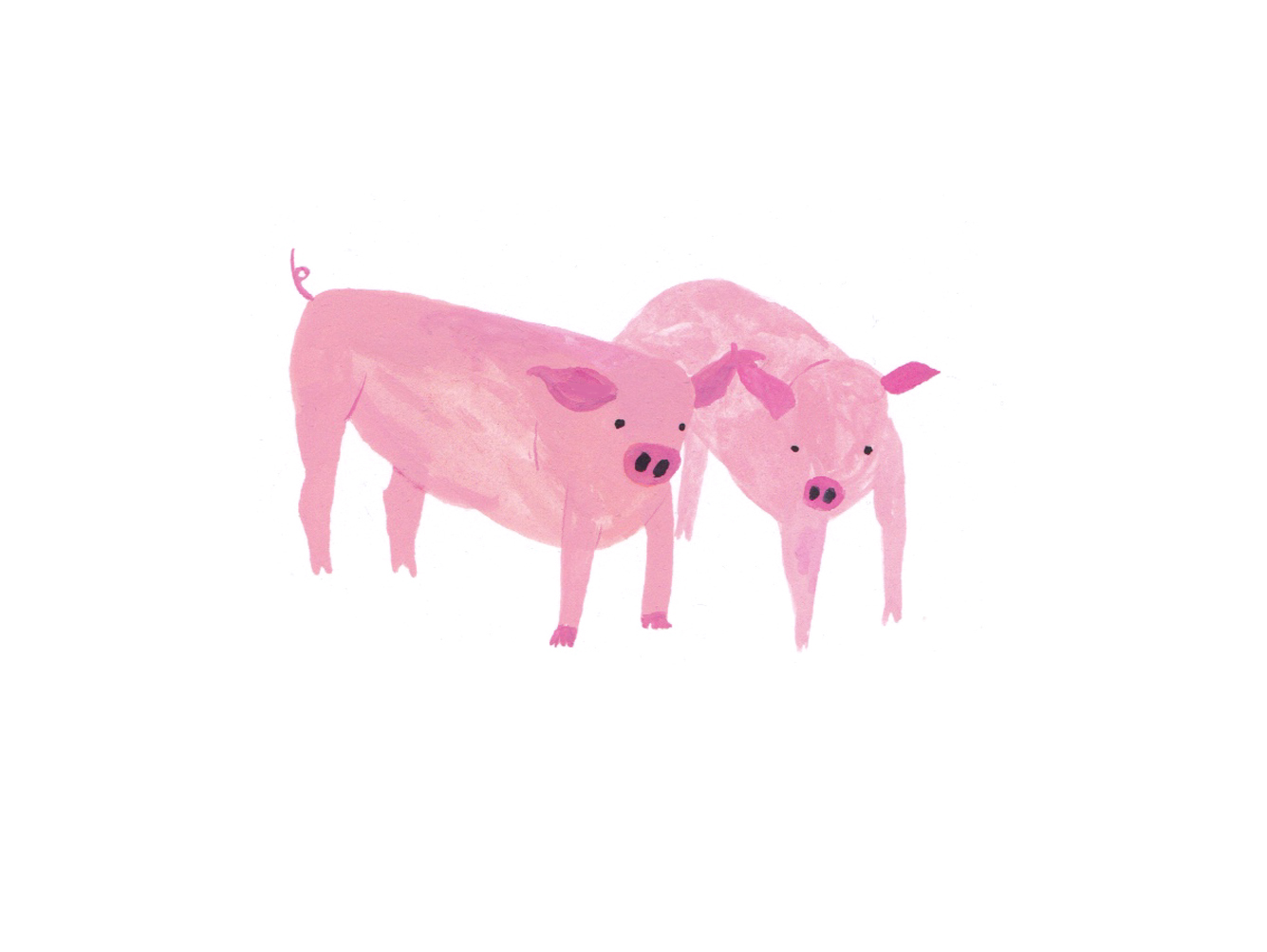 Copy of Silvopasture pigs.jpg