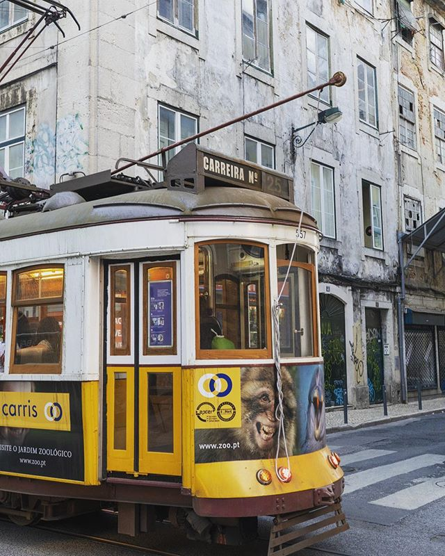 "These ""Remodelado"" trams pass so incredibly close you can reach  into the window but the pop of yellow makes them hard to miss.  Tram 25 that ran down our street is on more of a local route, only runs on weekdays. They are a fun ride, great way to see the city. #lisbon #lisbonne #lisboa🇵🇹 #portugal #bestlisbonphoto #streetcar #tram #publictransport #yellow #electric #remodelado #keithandmelissa #travelgram #familytravel #lisbonstreet #intersection #travelmom #summertravel #toplisbonphoto"