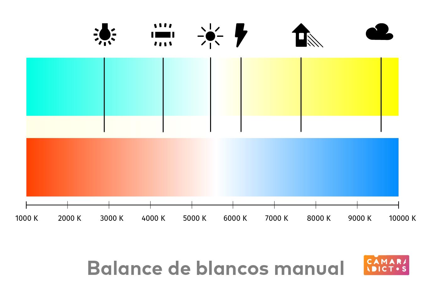 Balance Manual-04.jpg