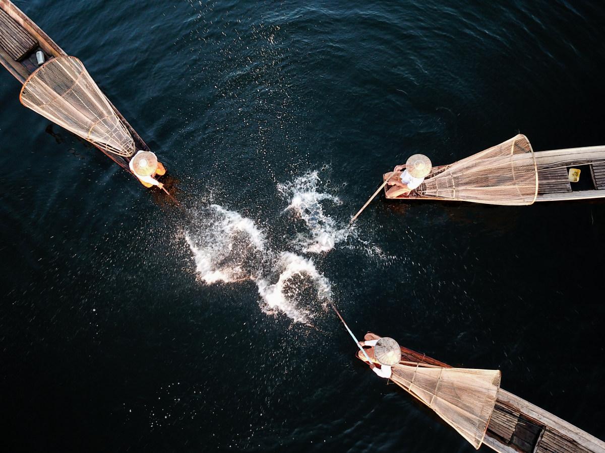 1º lugar Aficionado: 1茵莱河捕鱼表演.jpg (Espectáculo de pesca del río Inle) -水庆华