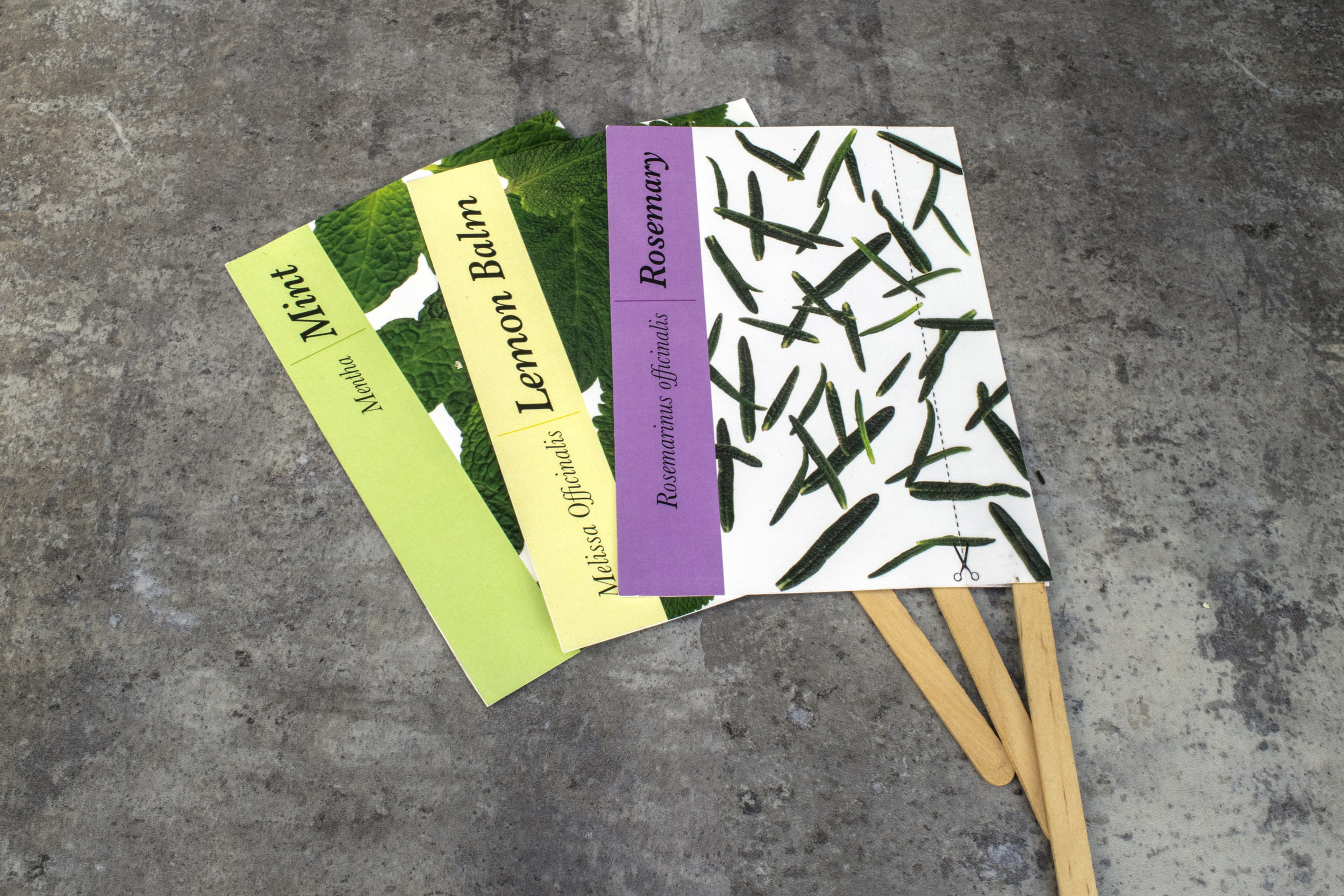 "I created an herb starter kit that contains herb information and garden tips. Each card includes a detachable label that can be put in your garden so you can grow herbs all year around. ""Its gardening thyme."""