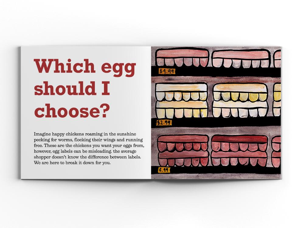 which egg layout.jpg