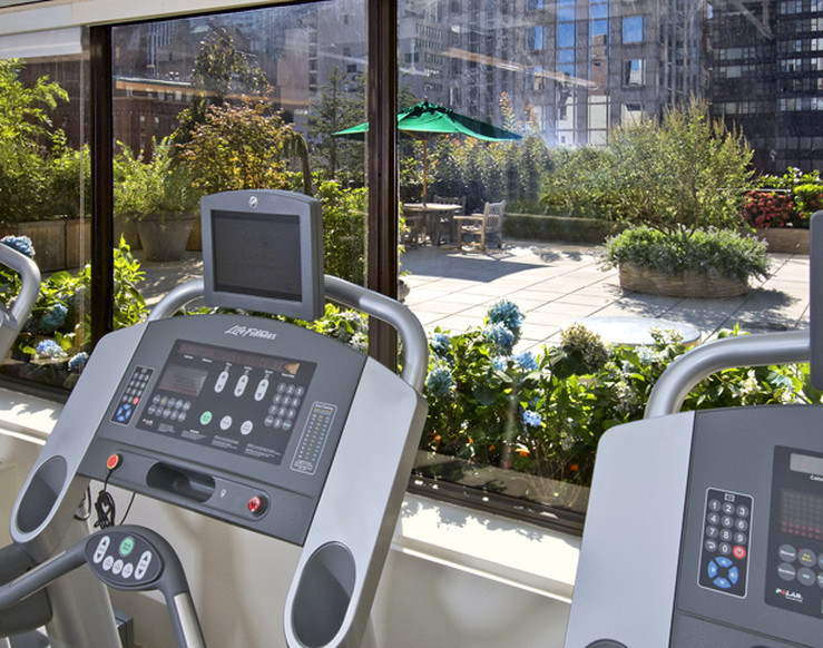 Terrace View from Treadmills