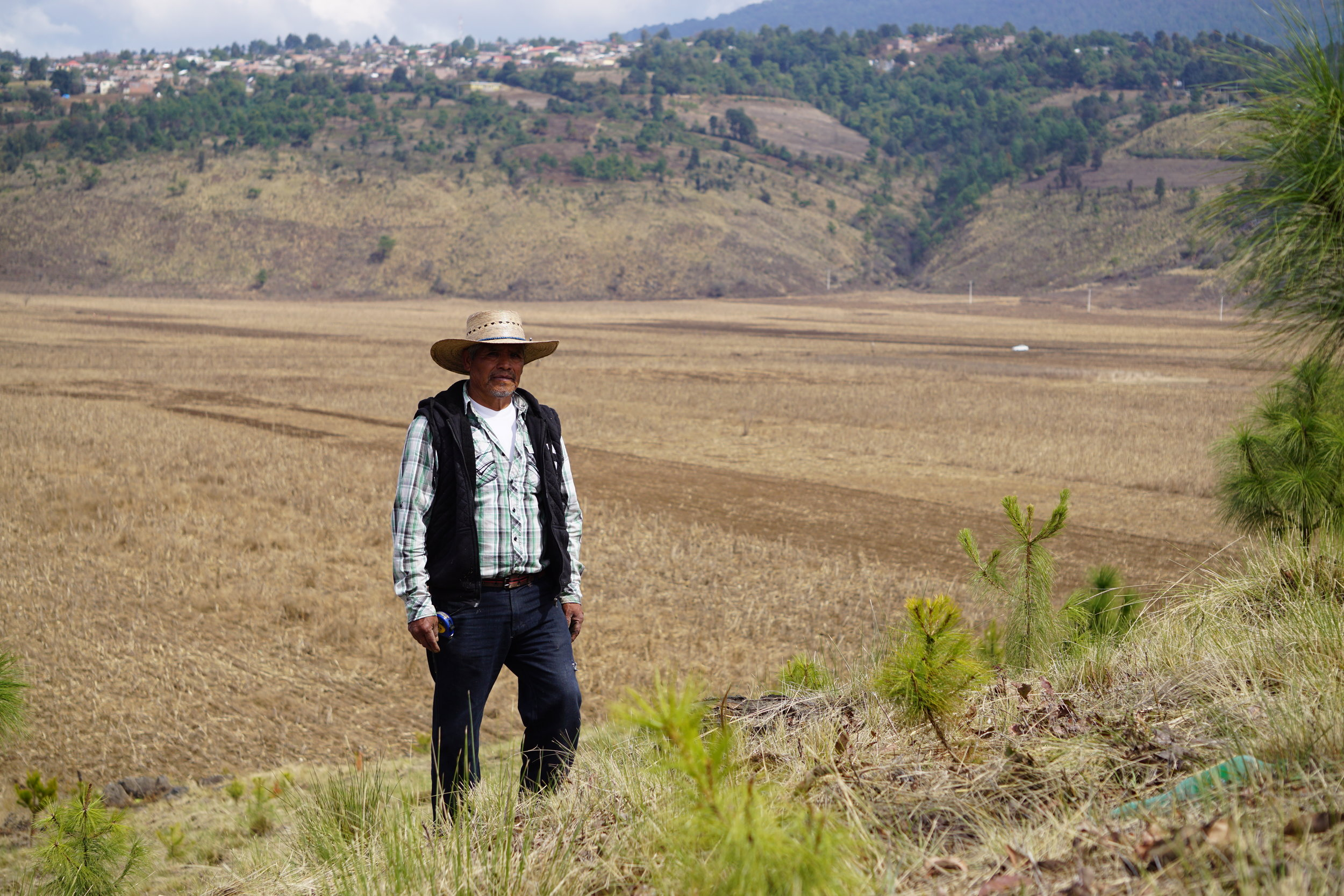 - In the time that I was in Georgia, I was reforesting, trimming - doing work that protected pine trees. One day I thought to myself, why I am I doing this work in another country? Why am I not doing this in my own country?- Catarino Joaquín Campos, Resinero, Cherán Atzicurín