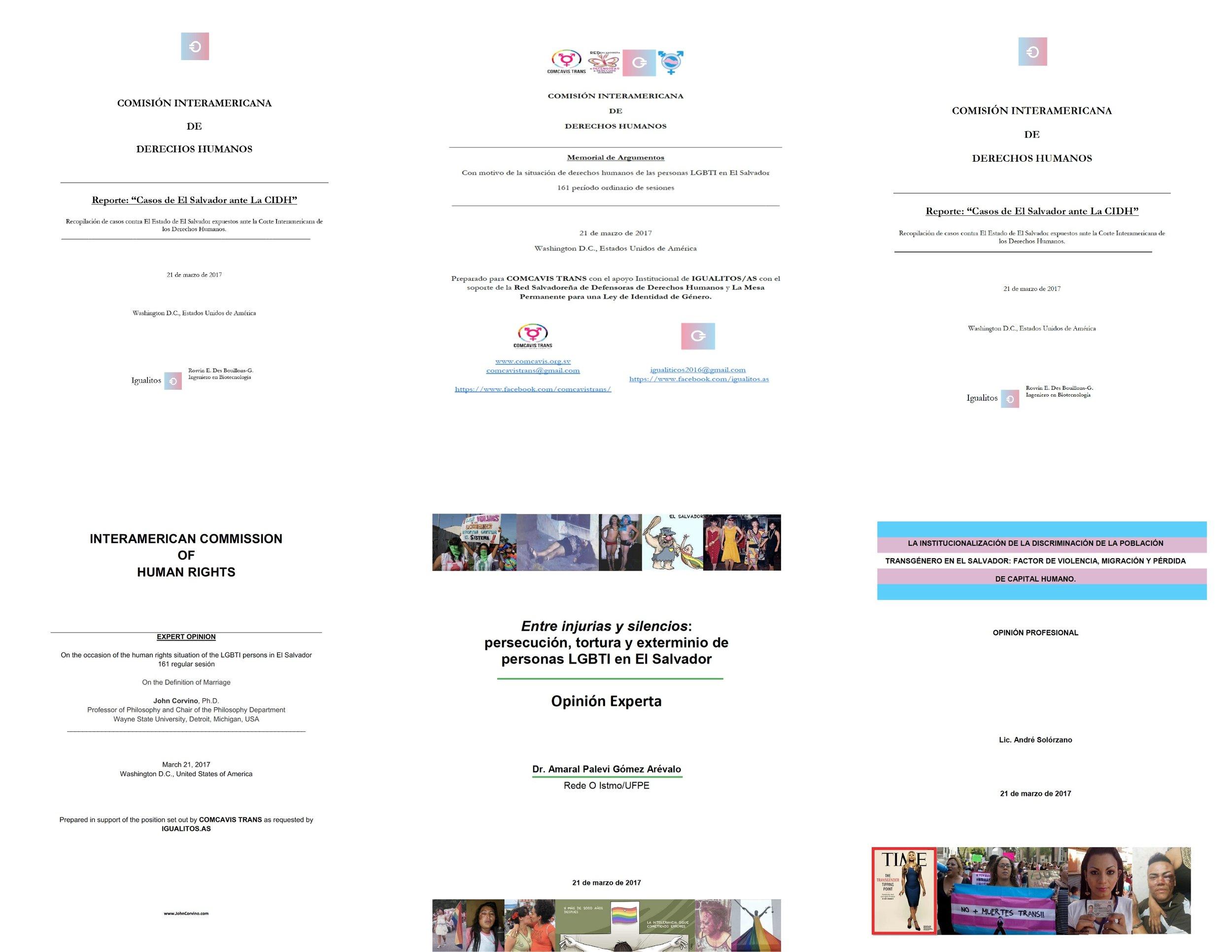 HIVE presentation - Untitled Page.jpeg