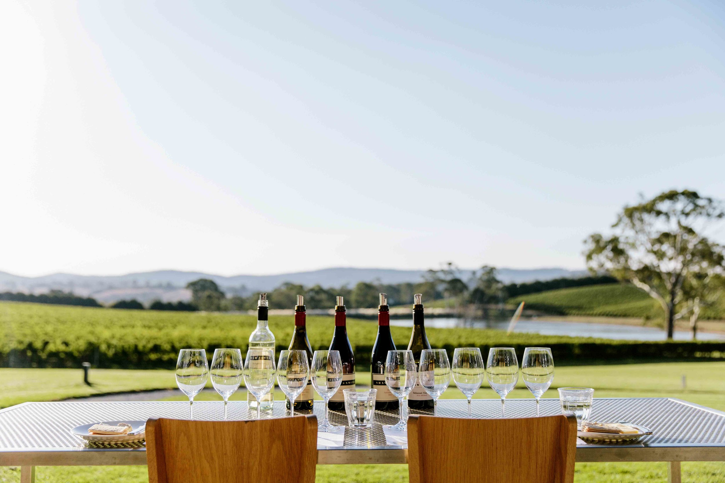 Seated comfortably in the Tasting Room, peer out through the floor-to-ceiling window to take in the breathtaking view out over the Shaw + Smith vineyard and beyond to the Adelaide Hills.