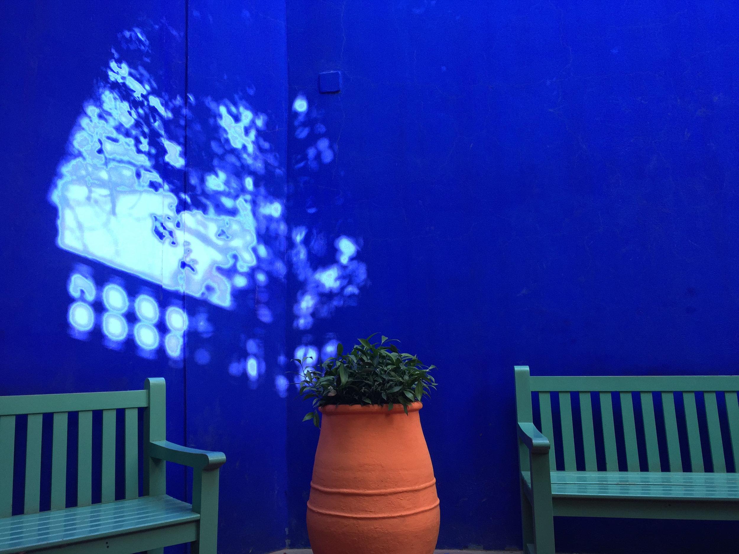 20150423-2.雷勒藍Majorelle-Blue.JPG