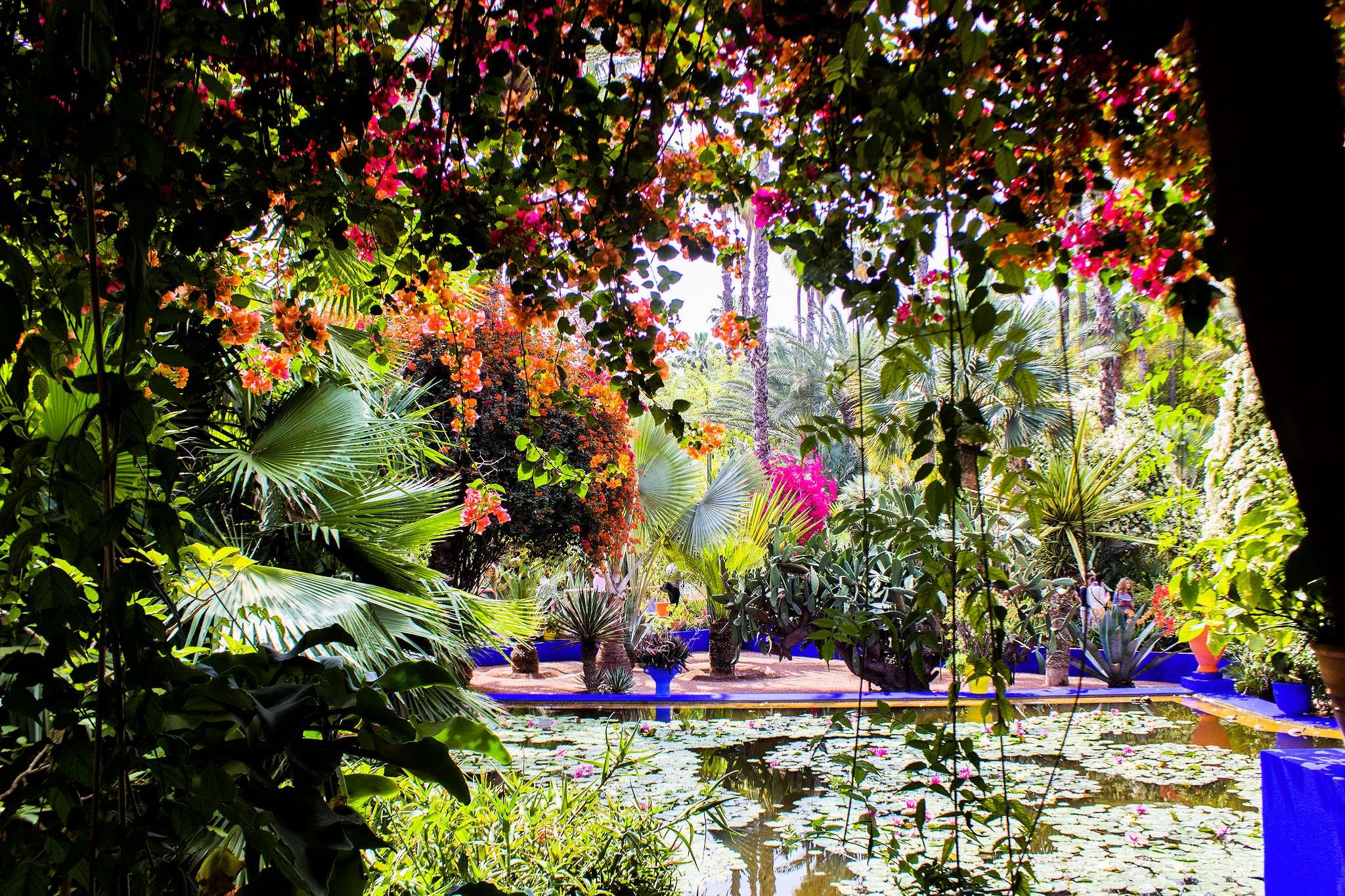 20170704-Majorelle.Garden.original.35975.JPG