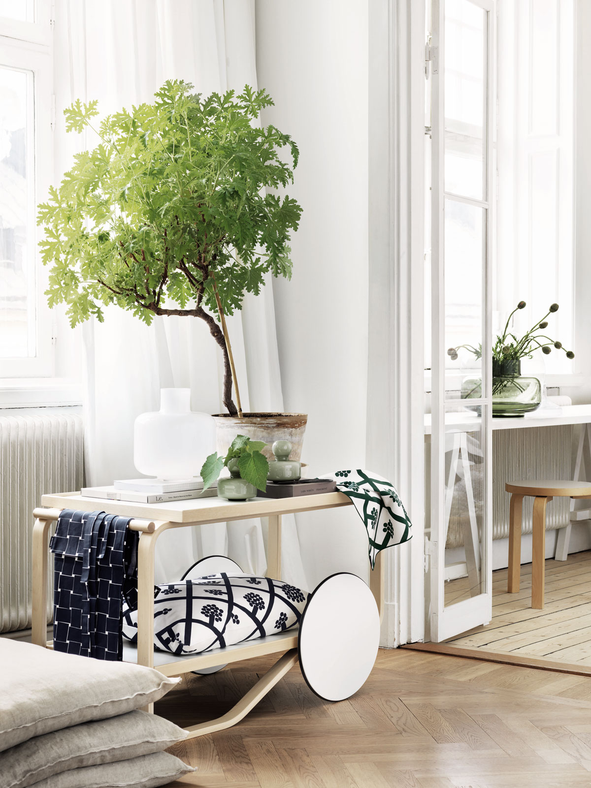 - In Feng Shui there is also always the question of balance. Too much green can be overpowering, so green foliage should also be balanced by white or beige colours, this will have a purifying and harmonising effect.