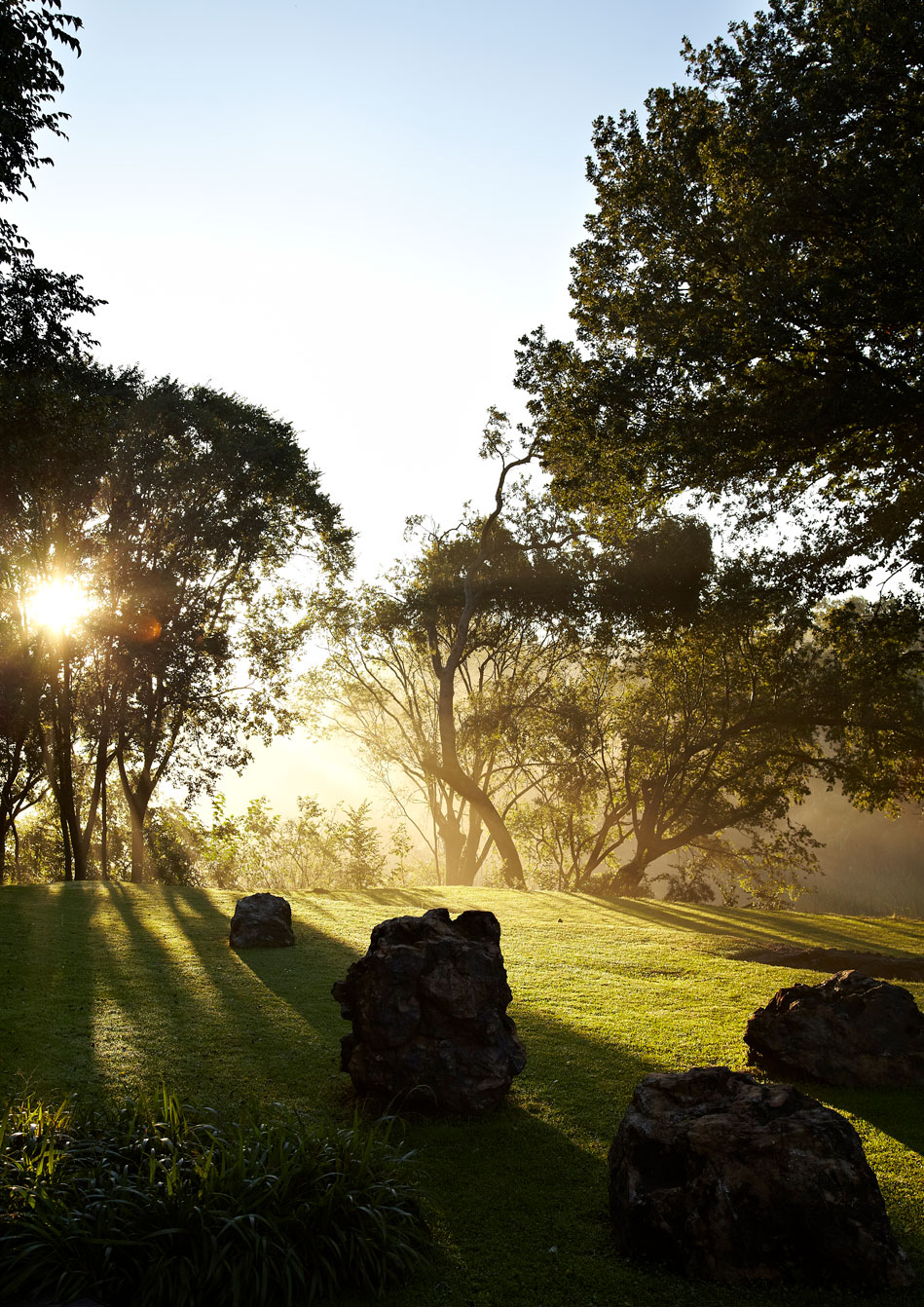 The beautiful setting of the stream‭, ‬rocks and lawn surrounding the pavilion evokes the layers of nature and artifice in the surrounding landscape‭, ‬and encourages contemplation within the profound setting of The Cradle of Humankind‭.‬