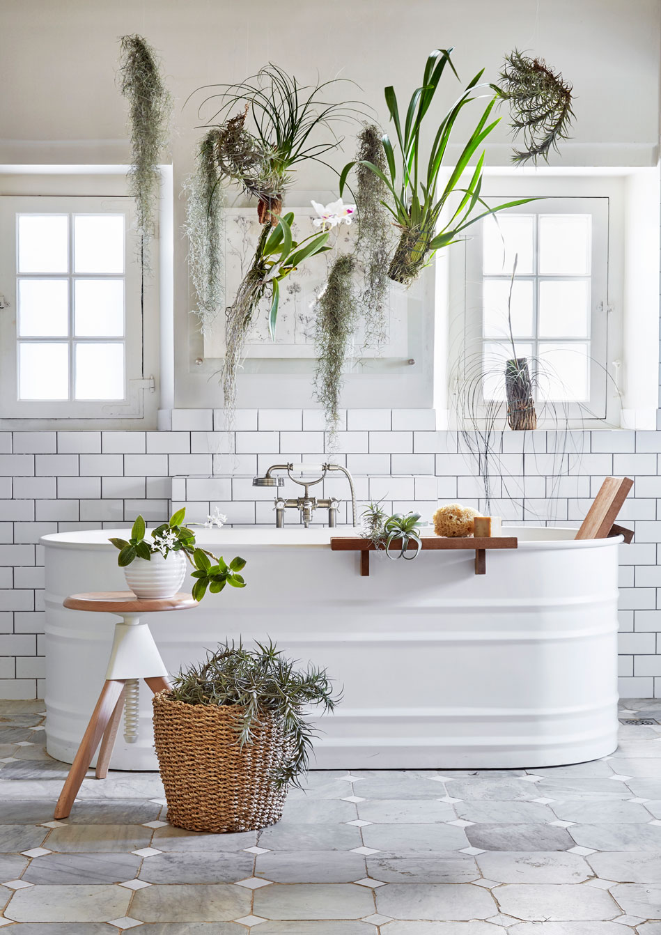 HANGING GARDENS‭ ‬  A configuration of air plants suspended above the bathtub is an exotic and ever-evolving art installation‭. ‬Don‮!&‬t limit the idea‭ ‬of layering to your soft furnishings and colour palette‭: ‬air plants are complemented by other tropical species such as flowering orchids and citrus blossoms with their intensely coloured leaves‭, ‬so intersperse these for a dramatic display‭. ‬A woven basket‭ ‬also makes a whimsical living display when draped with air plants‭. ‬  How To Hook screws are easily hung from the ceiling‭: ‬secure lightweight air plants with transparent fishing gut for an ethereal‭ ‬effect and display the heavier species on window sills and flat surfaces‭. ‬
