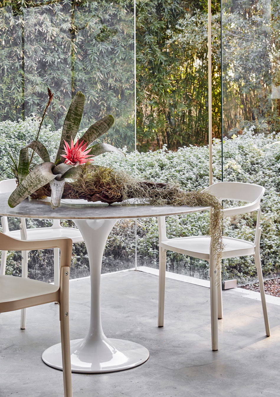 CENTRE STAGE‭ ‬  Rethink the centerpiece by displaying plants with oversized proportions and graphic forms‭. ‬The juxtaposition of the sculptural retro statement table with the unruly‭, ‬exotic botanical composition raises the dramatic impact to visionary new heights‭. ‬Using a‭ ‬large piece of driftwood as a base‭, ‬create an installation using exotic species such as a bromeliads or orchids along with a selection of air plants‭. ‬