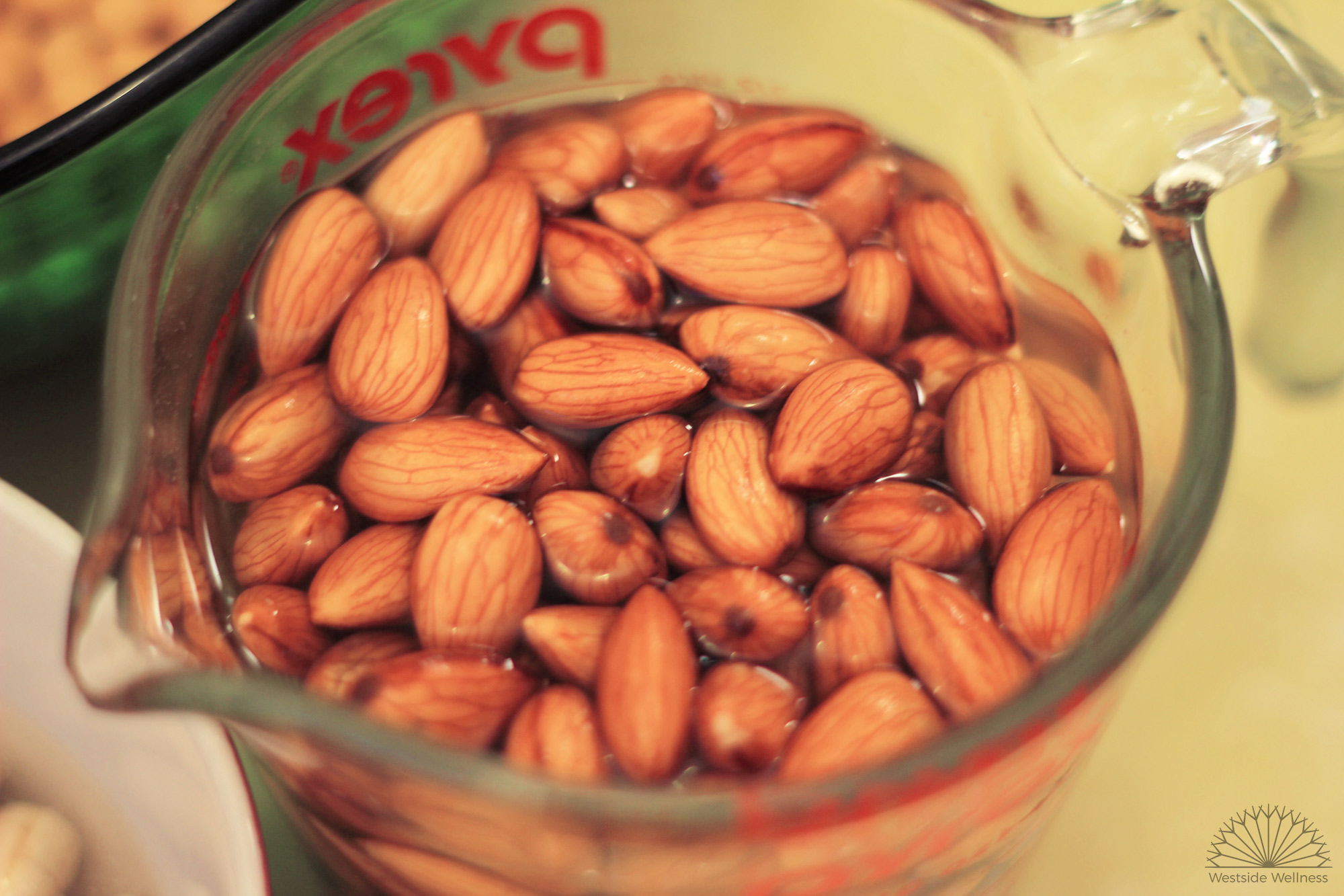 activating-almonds.jpg
