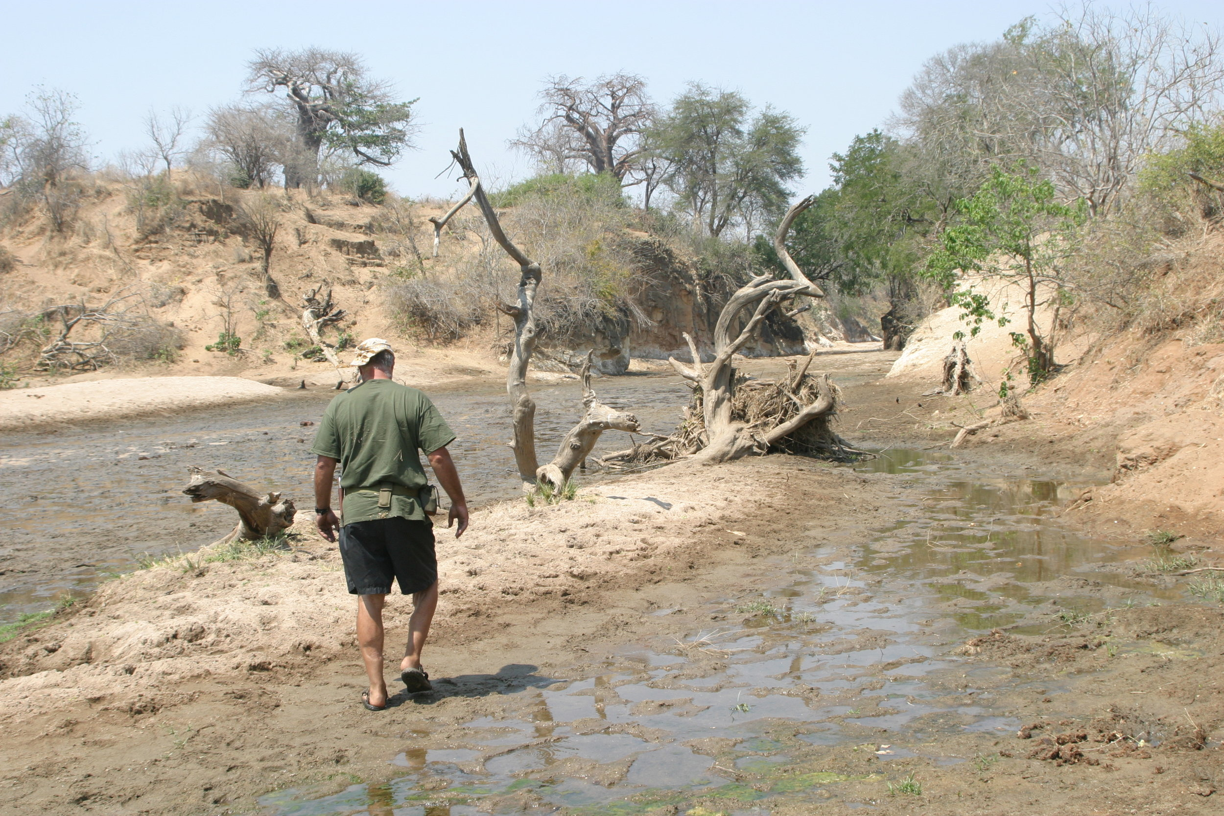 Collecting reference material in the Zambezi Valley area, Zimbabwe.