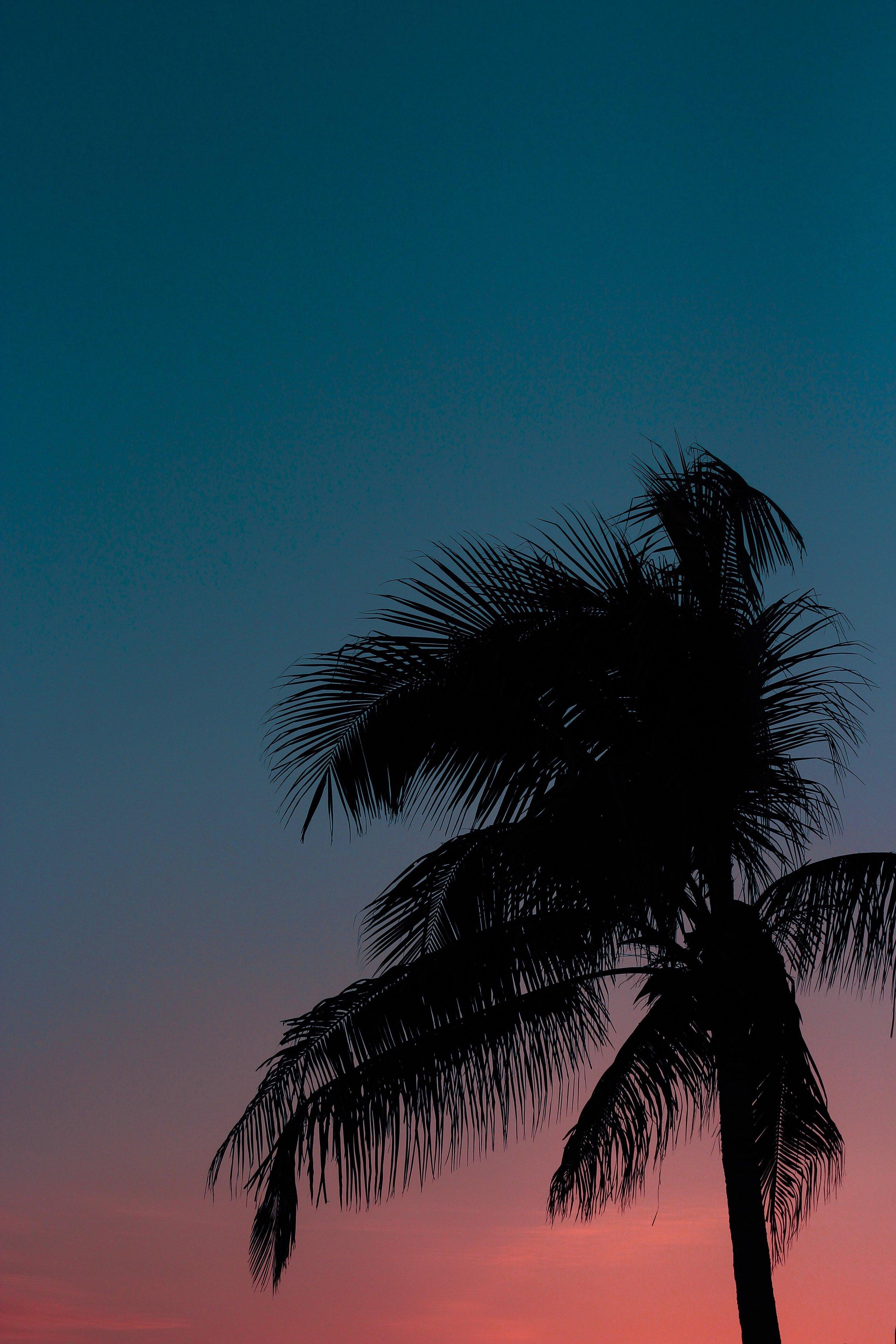 colored sky.JPG