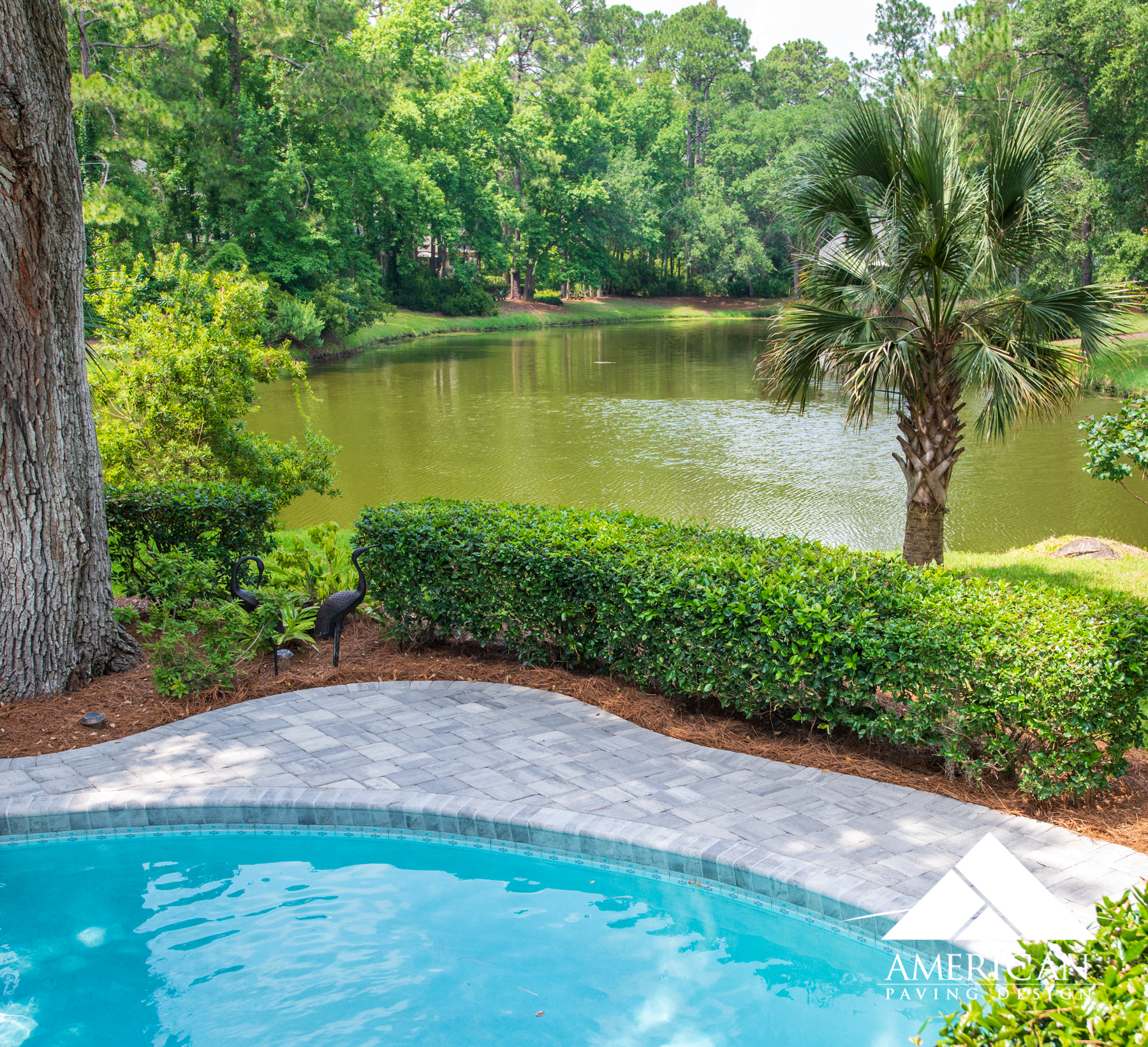 Backyard Pool Deck Ideas- Hilton Head Island