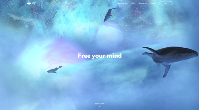 Created for MagicLeap.com