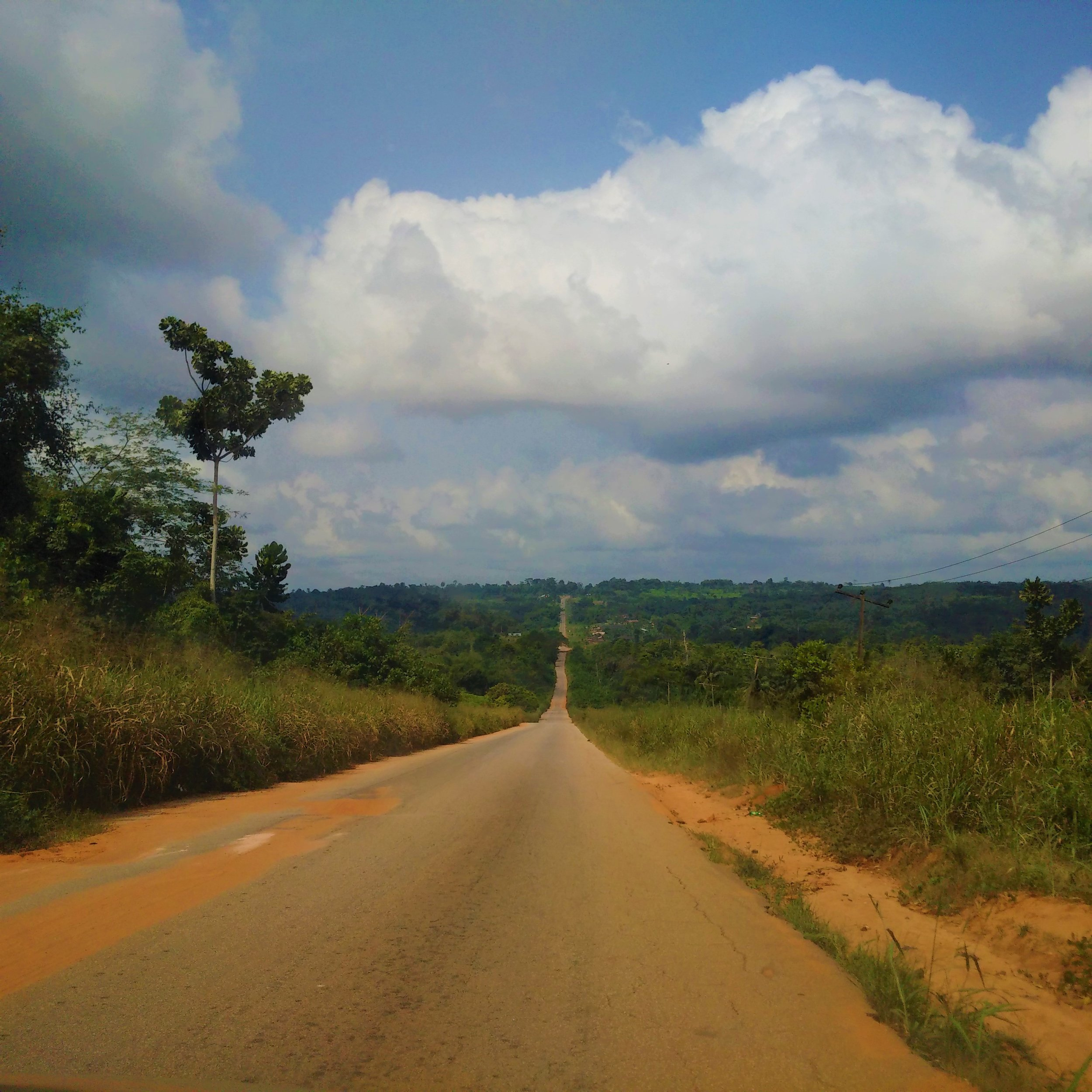 Road to Okomu National Park