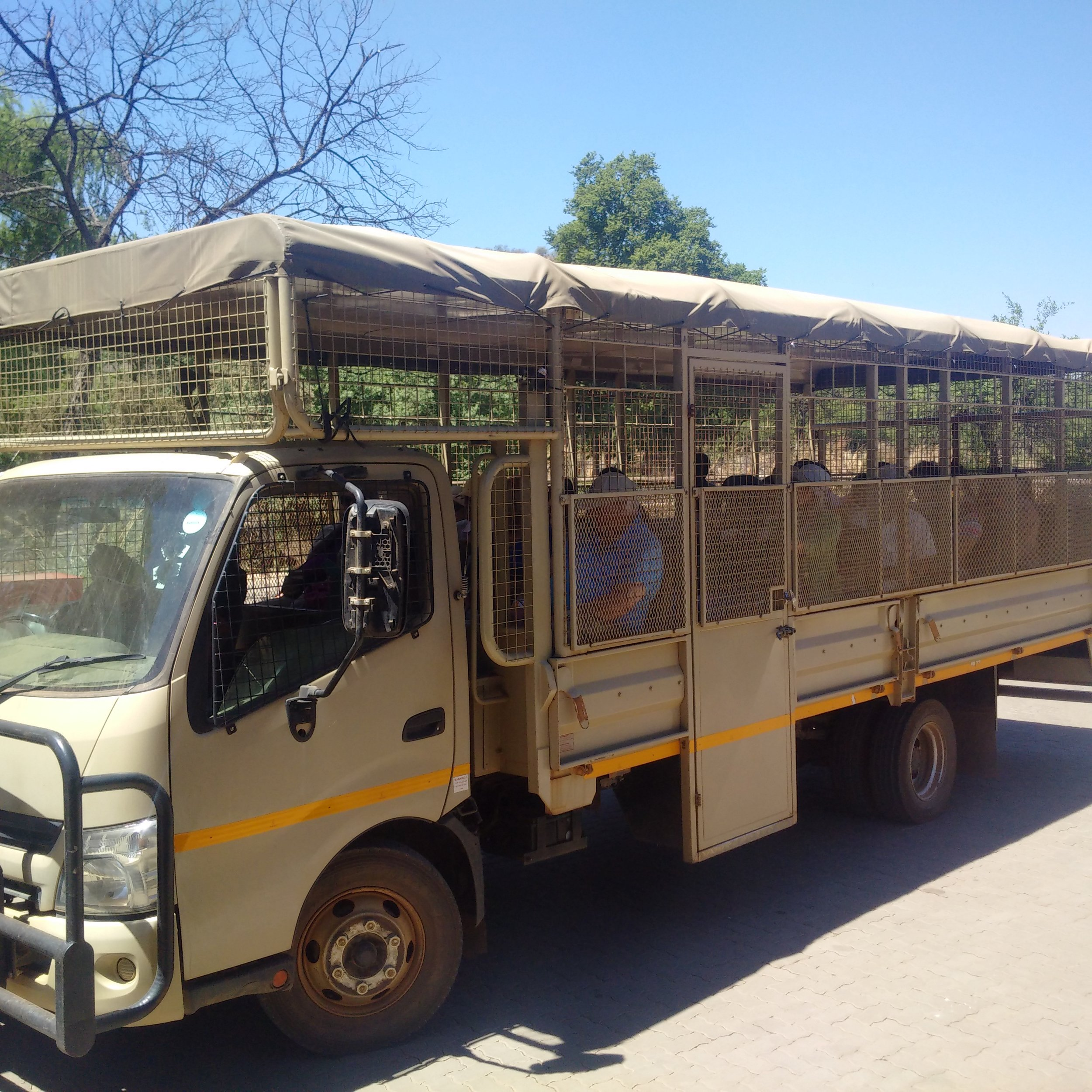 The Safari truck
