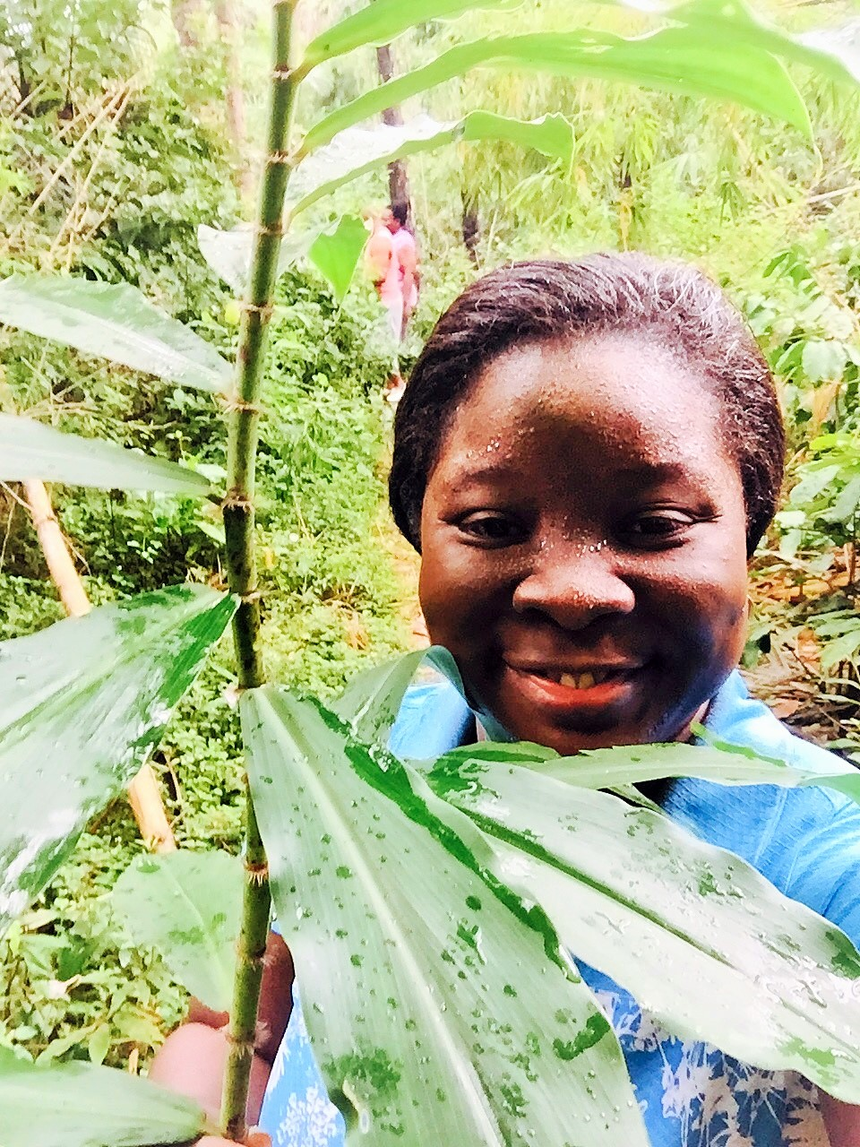 NGWO PINE FOREST On our way up the hill, the couple cut this plant and handed it to me. They said it cures all types of sickness. Sadly, I can't remember the name of the plant now but before I could say thank you and finish taking a picture with it, the driver collected the plant from me. Haba!. lol
