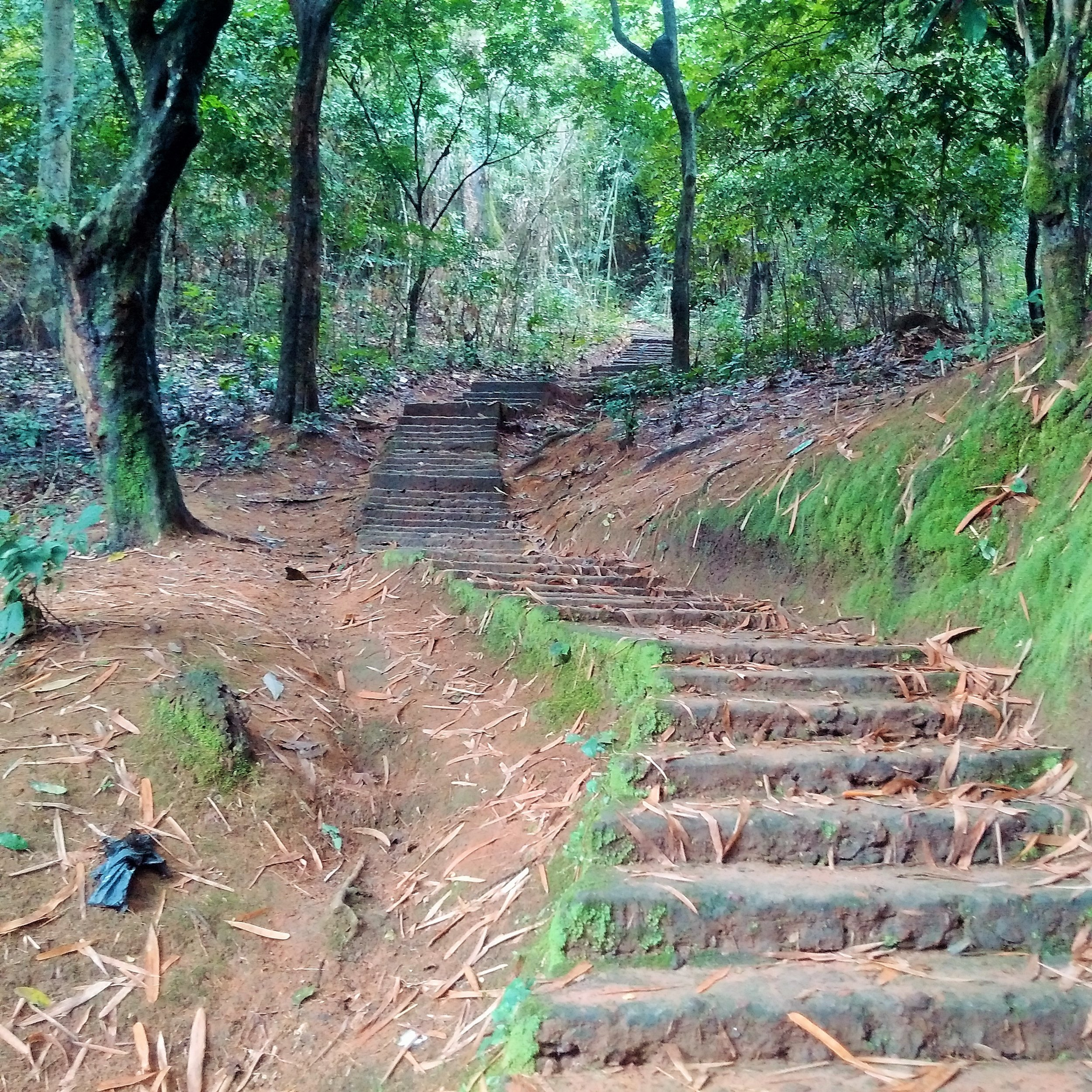 Steps leading to Ogbunike cave