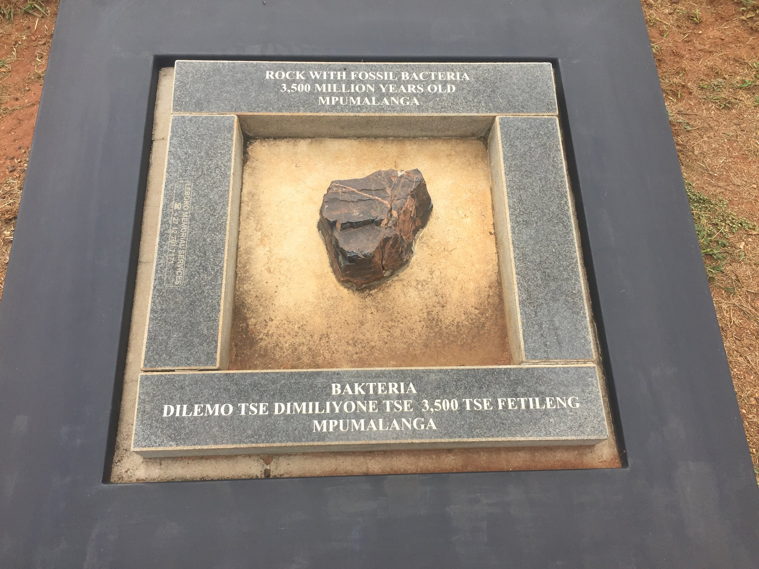 Sterkfontein cave South Africa