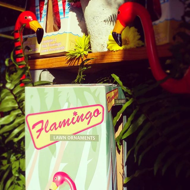 Even though school's in, summer is still going! It's hot enough, right?  Get that summer staple - pink flamingos - at #friendswoodhardware today.  #thebighammer #pinkflamingo #summer #summersnotover #friendswood #pearland #houston #tx #fun #summerfun #pink #classic #retro #colorful