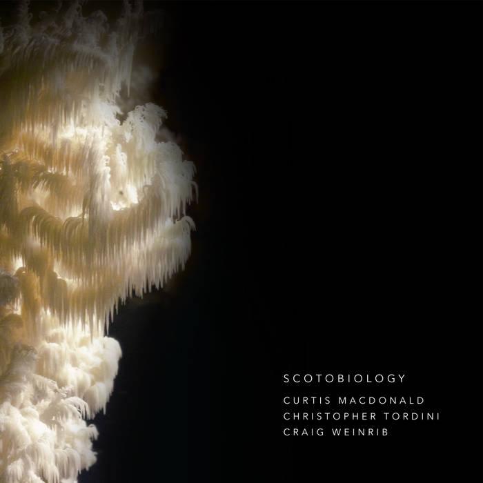 Scotobiology.jpg