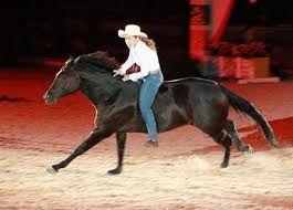 Stacy Westfall gallop 2.jpg