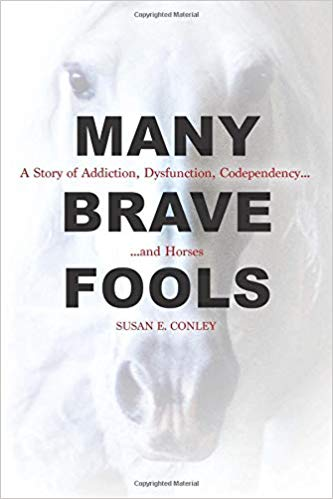 Many Brave Fools book cover.jpg
