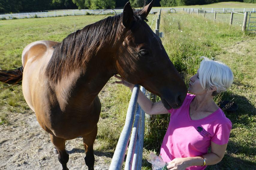 Dusk to Dawn gets a kiss from Kim Weir. Photo credit:  The Daily Gazette