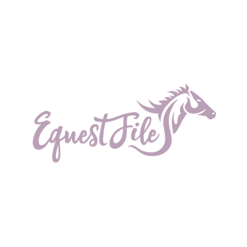 BOH Website Thumbnail - EquestFile.png