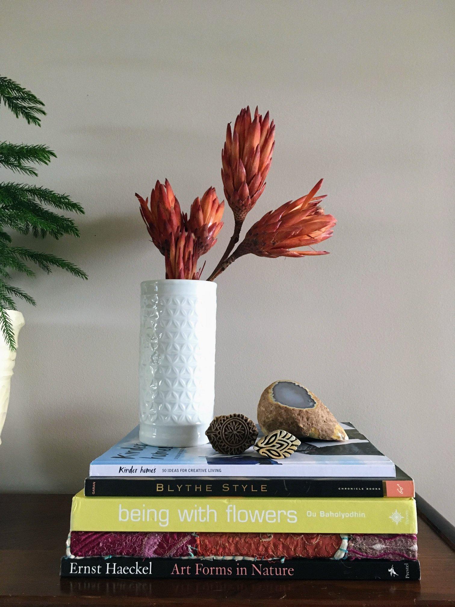 11 shelfie with protea.jpg
