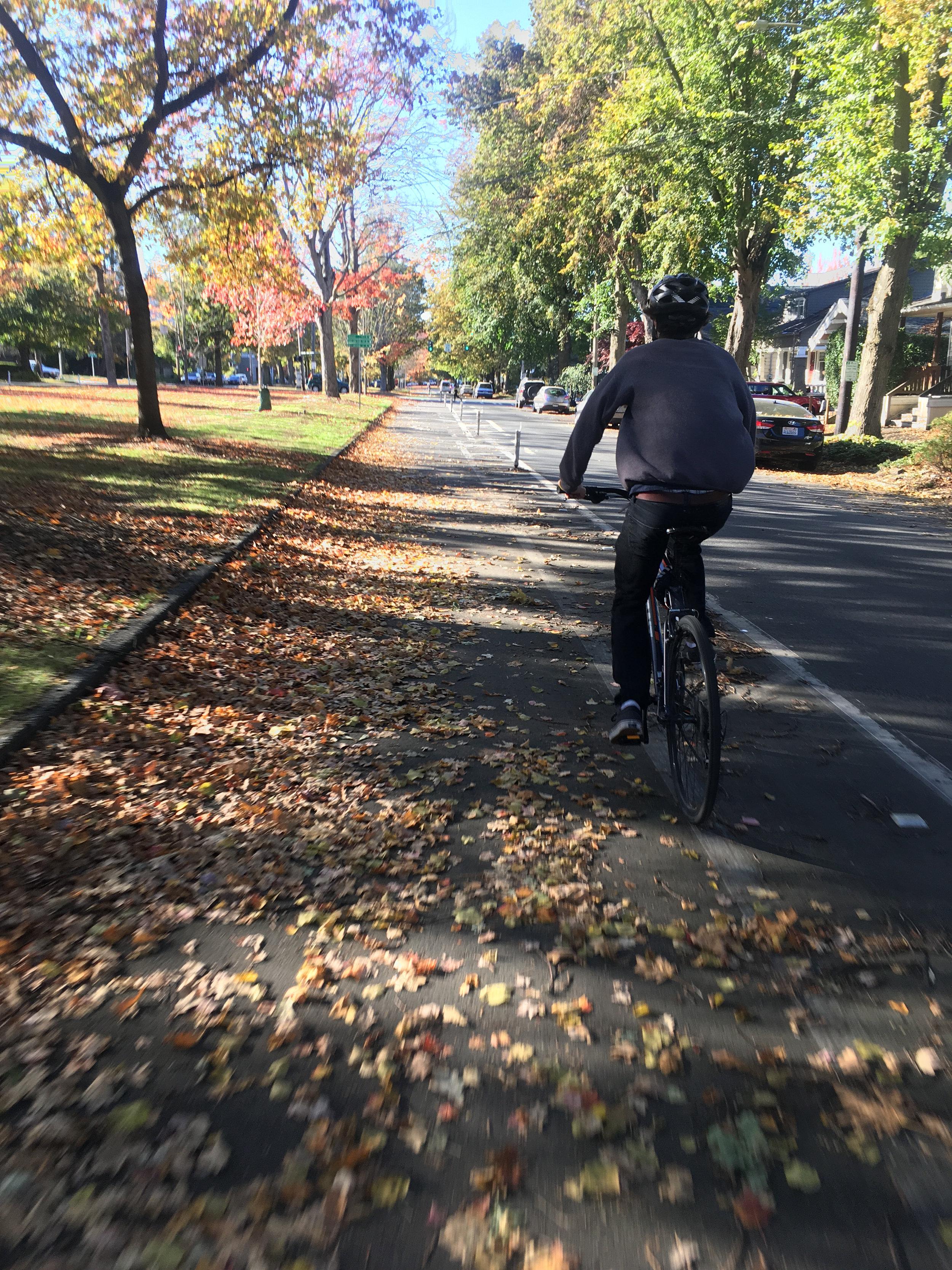 Bike Friendly Area