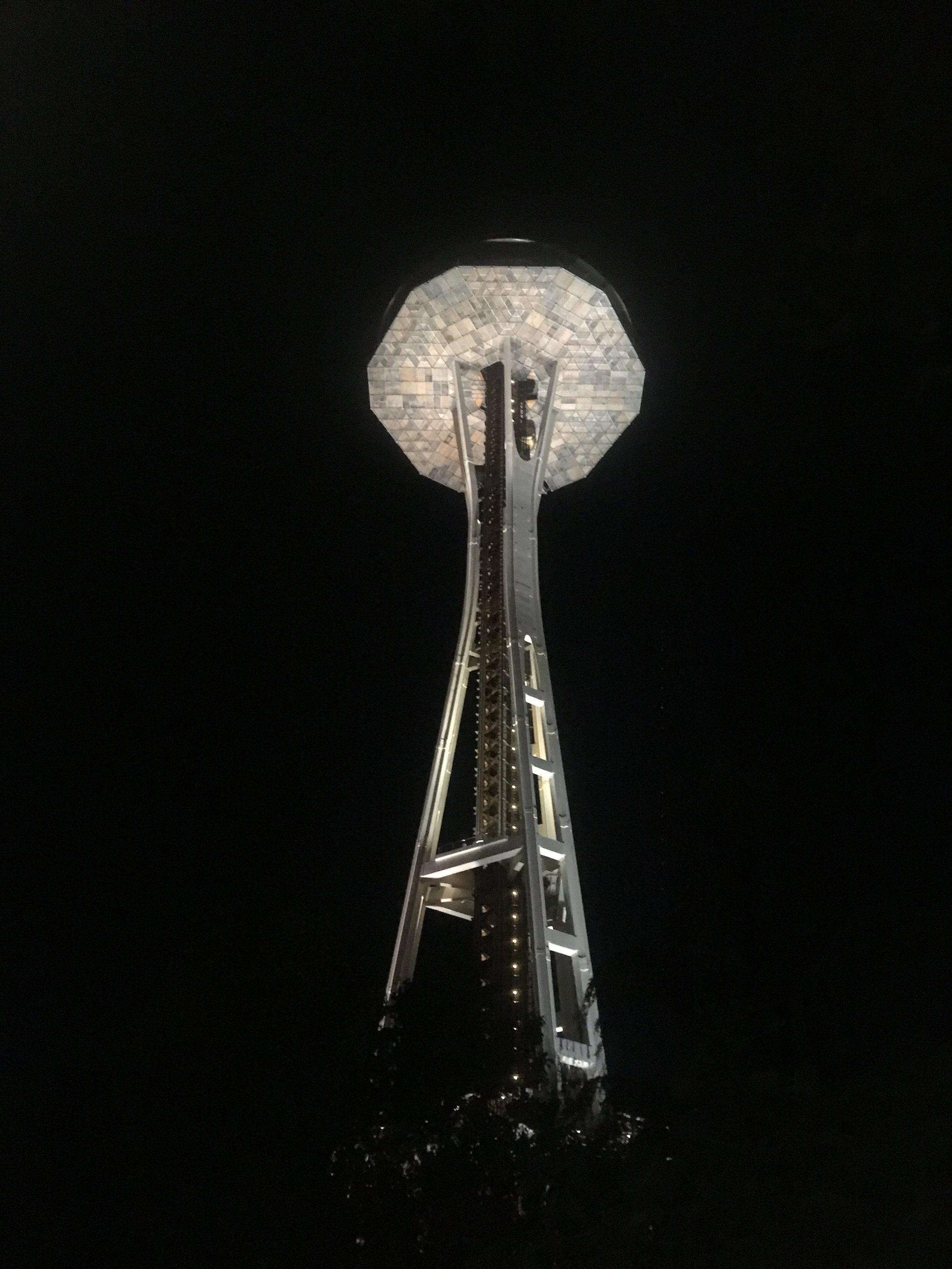 Went to see the space needle.