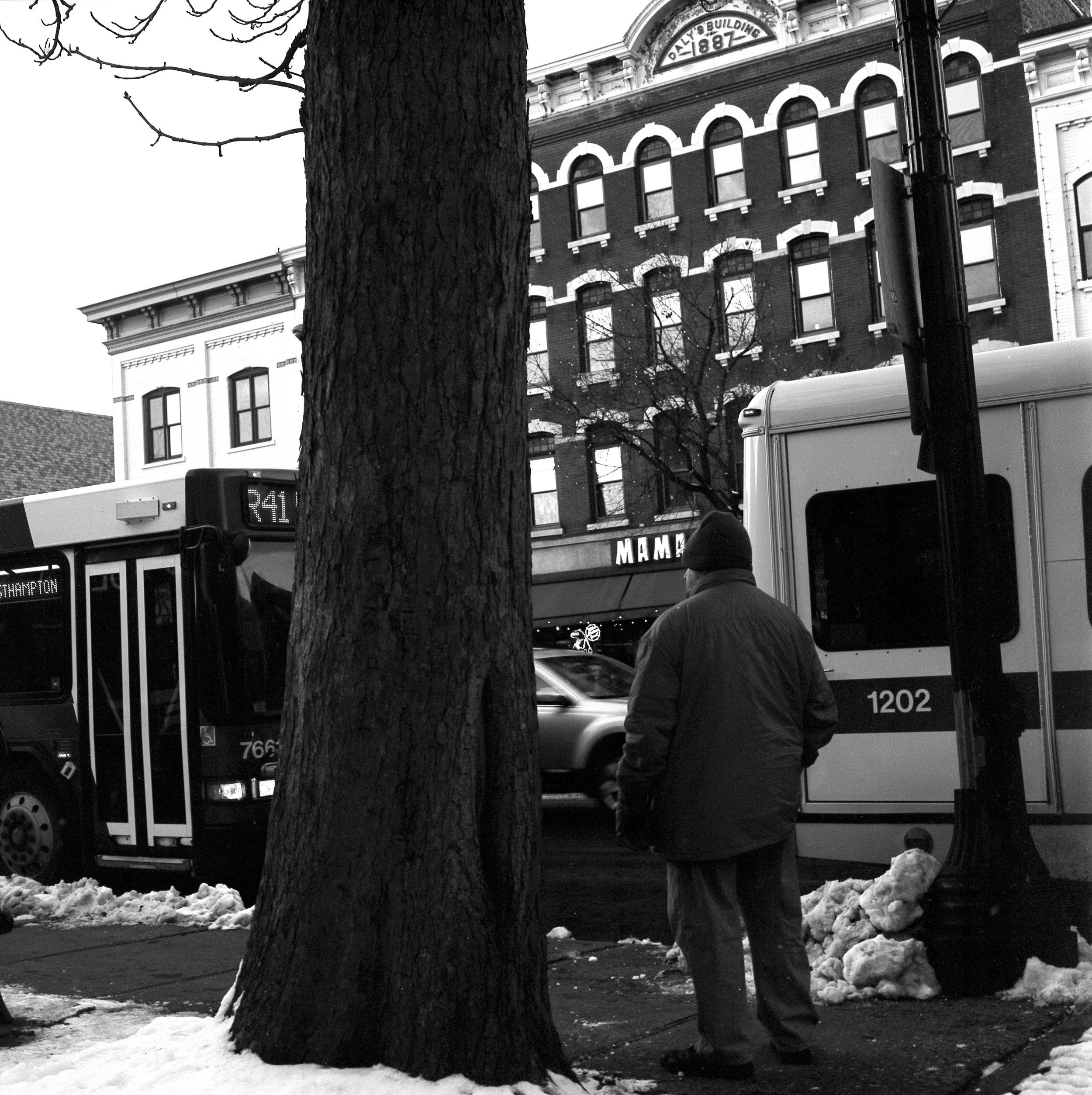 Bus4.jpg