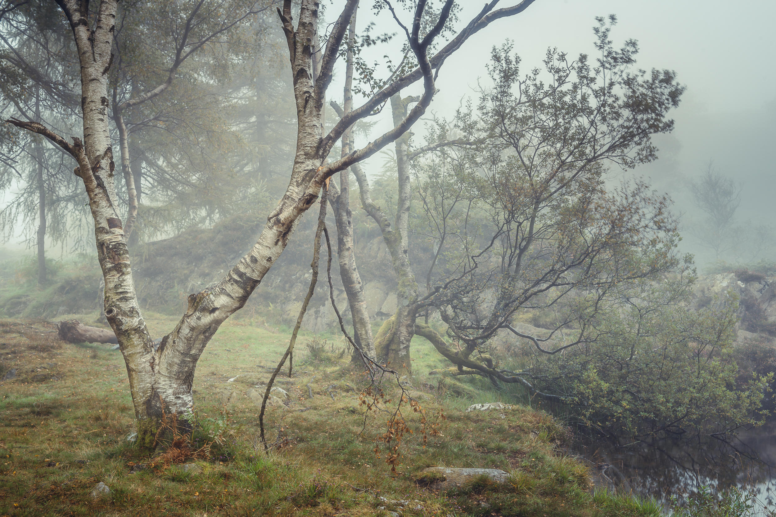 Tarn Tales III - Holme Fell