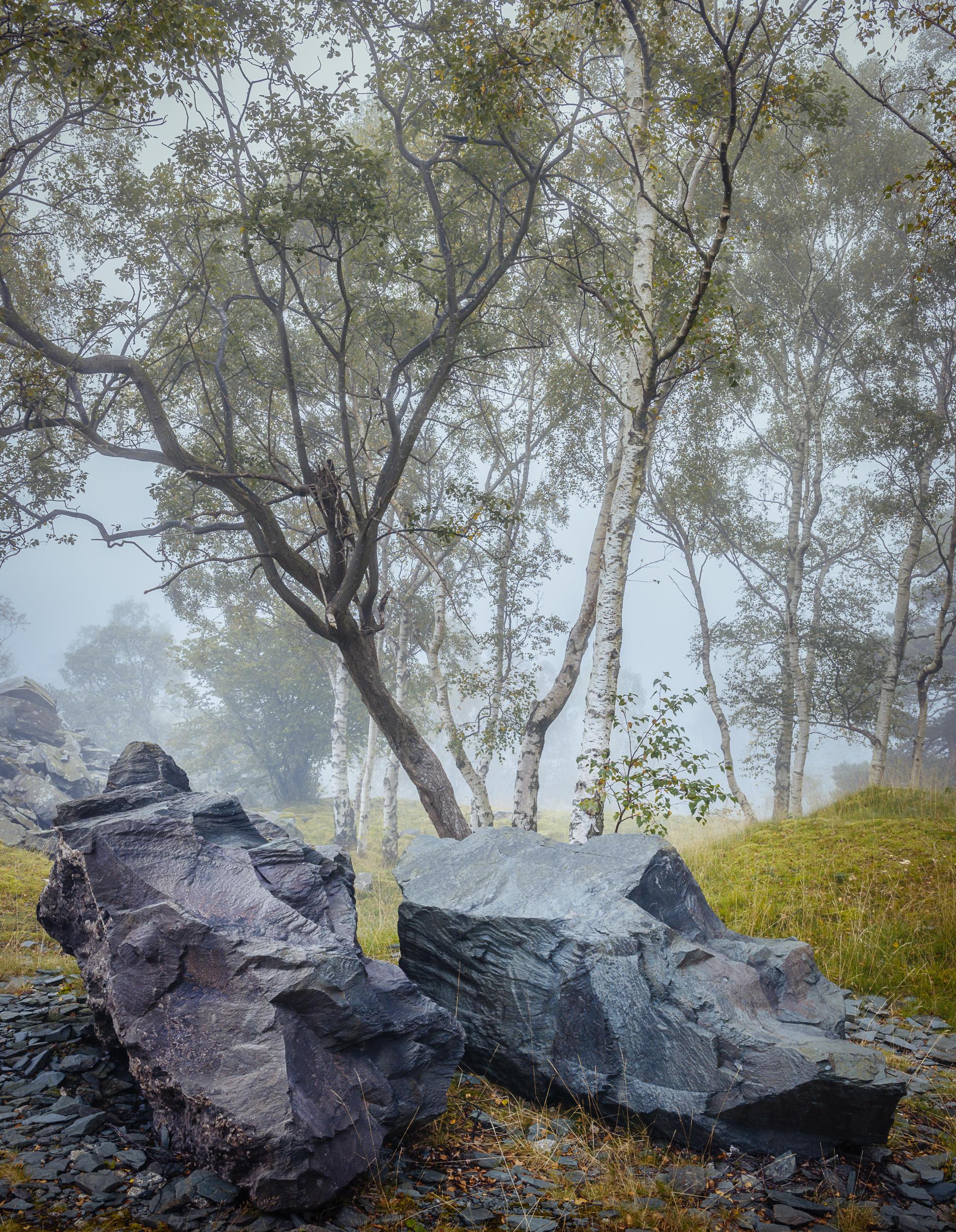 Boulders - Hodge Close