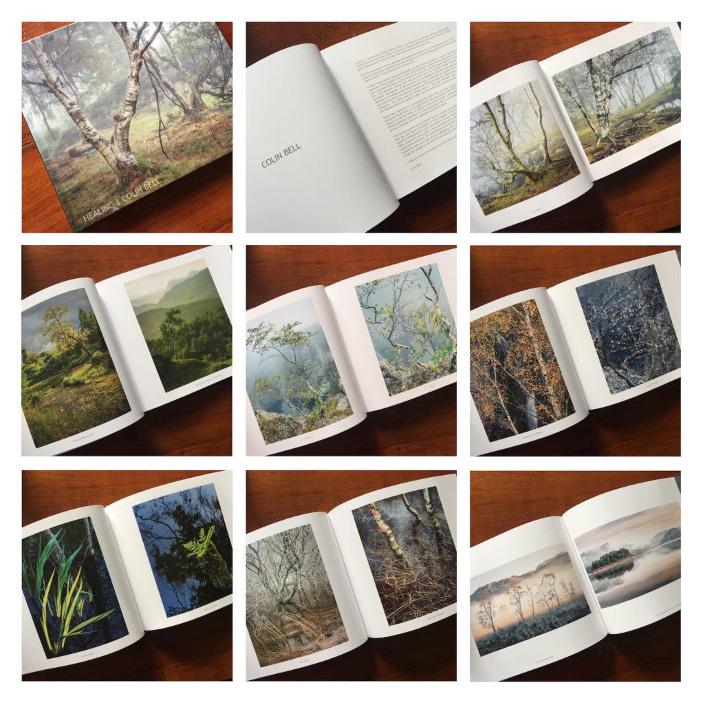 bookpics-2-copy-1022x1024.jpg