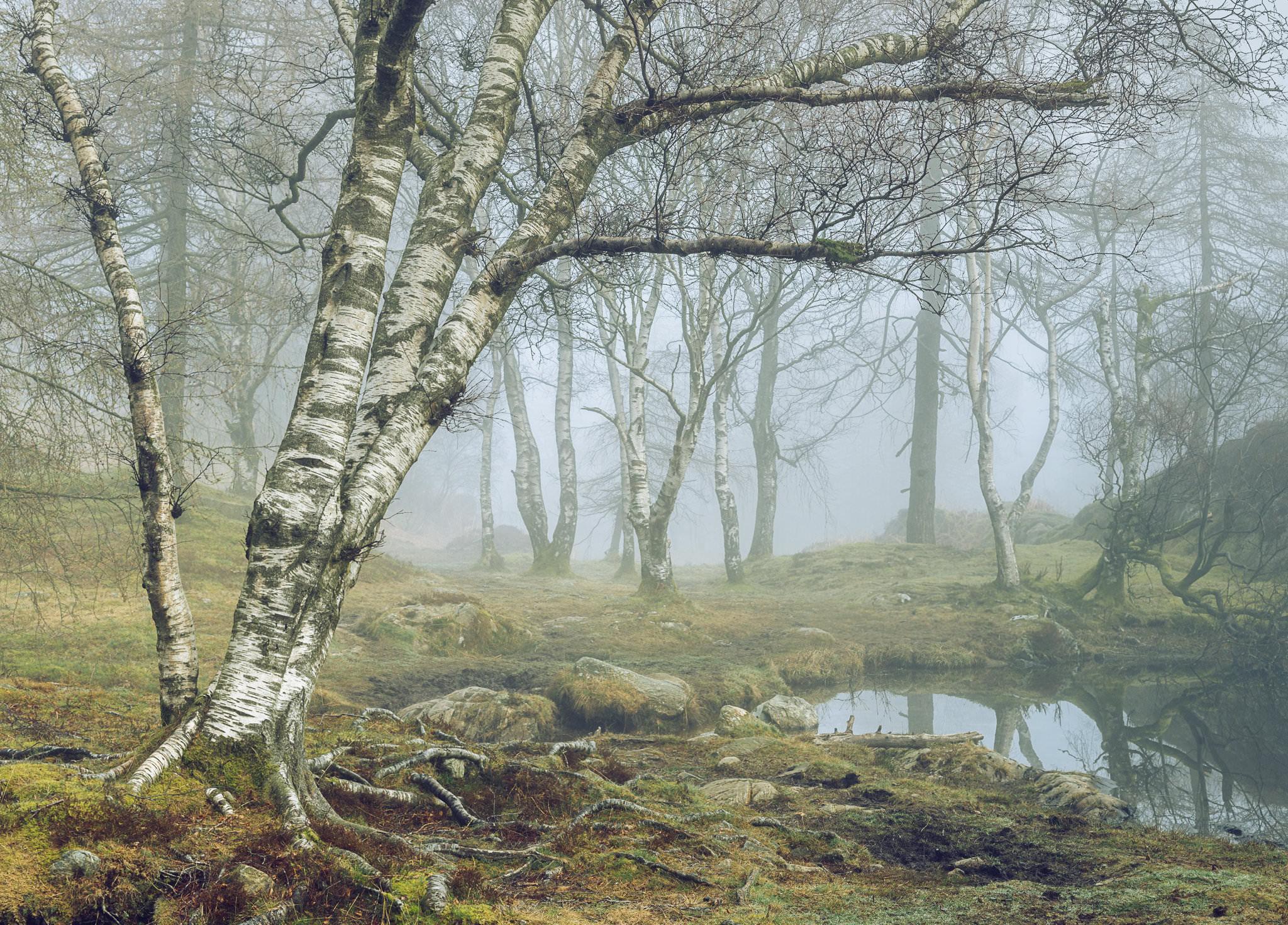 Tarn Tales II - Holme Fell