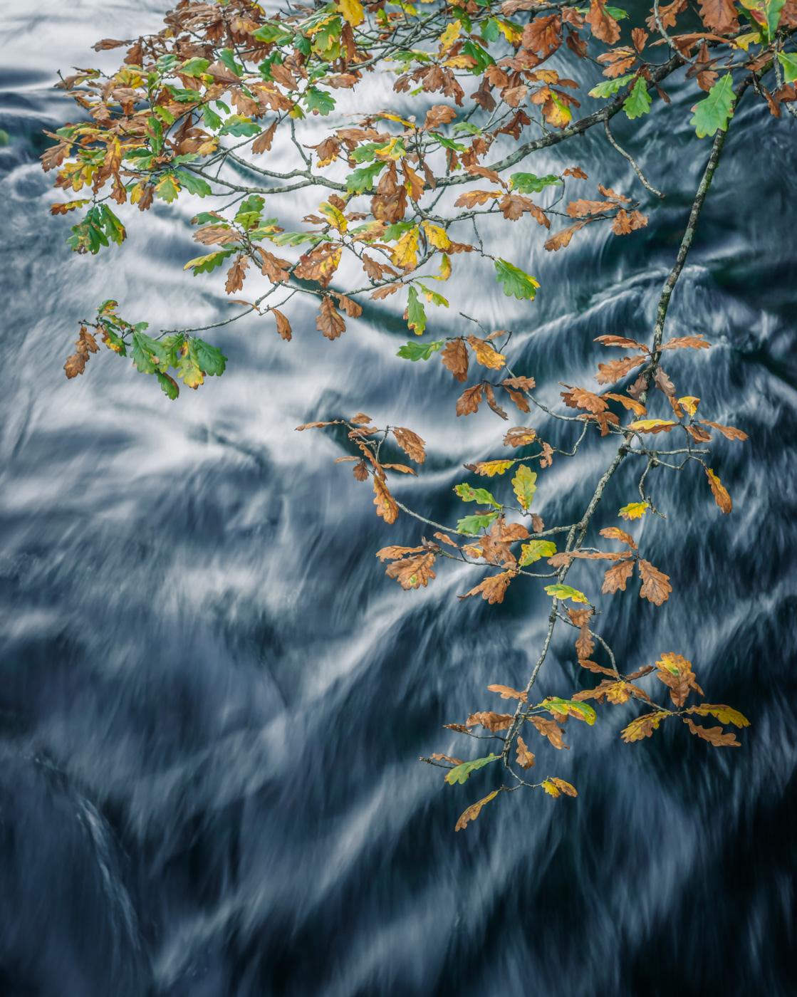 Brathay Autumn II