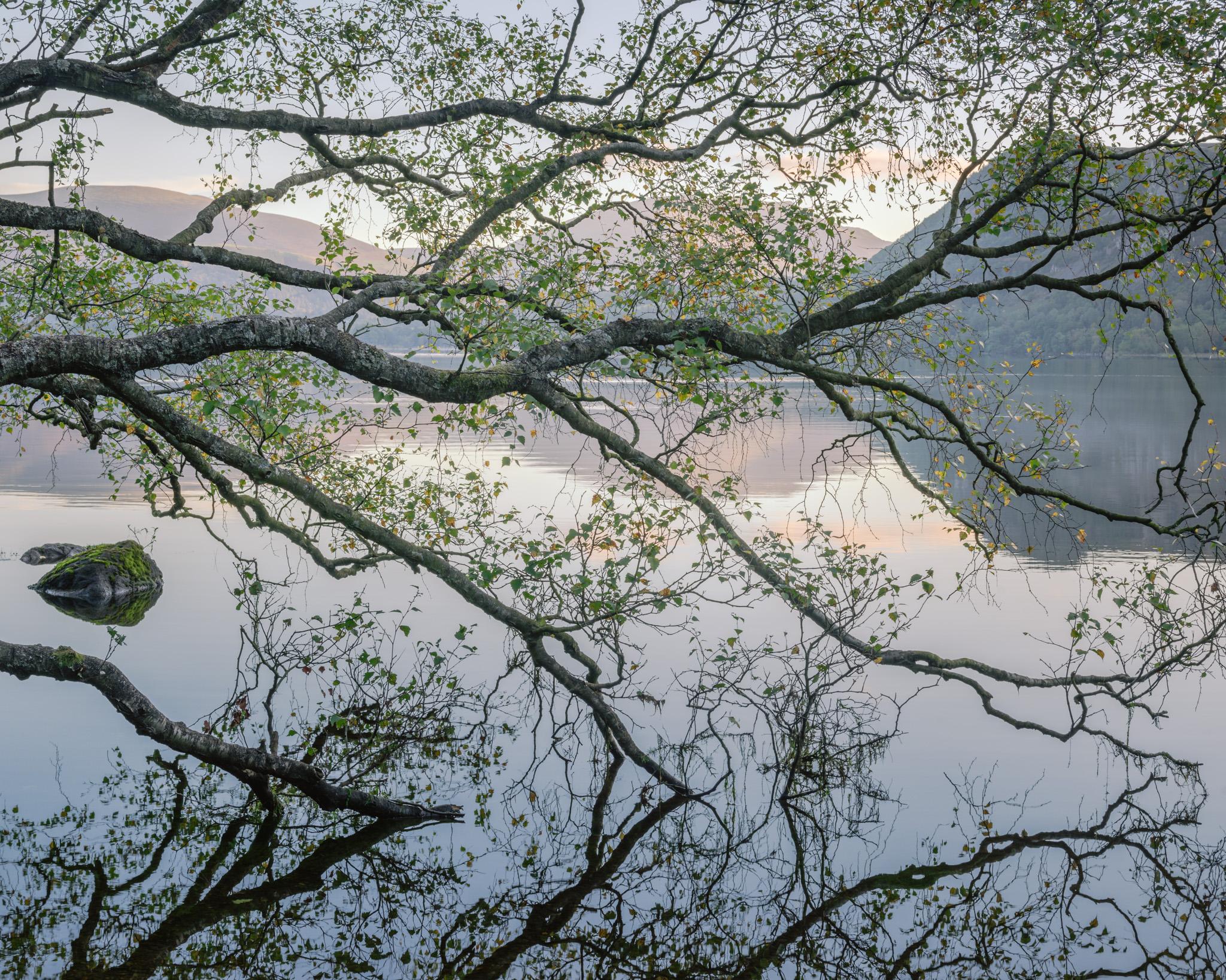 Sunrise from Manesty Woods, Derwentwater