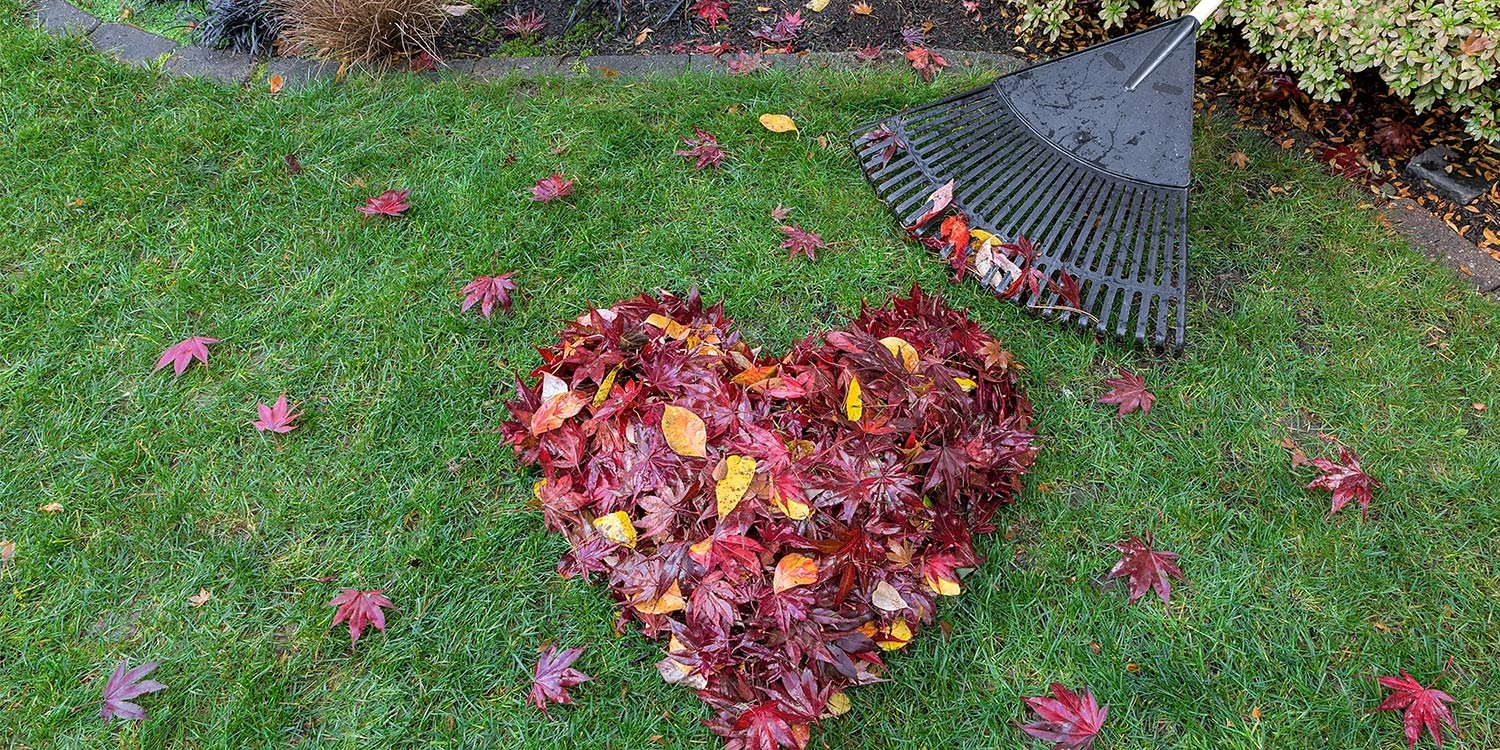Start getting ready for winter by raking leaves and showing your home some love!