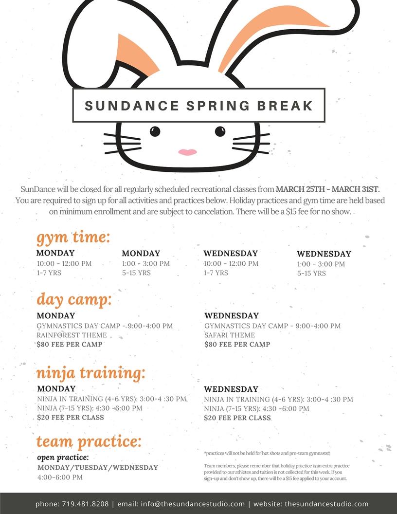 spring break flyer.jpg