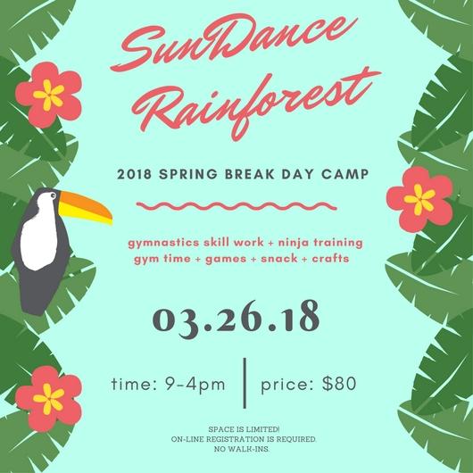 spring break camp flyers.jpg